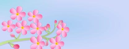 Baner med en filial av körsbärsröda blomningar med papperssnittet Pappers- ar Arkivfoto