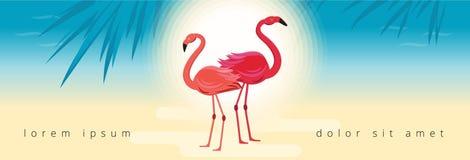 Baner med flamingo, tropiska sidor och havsbakgrund vektor illustrationer