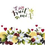 Baner med fruktblandningen för din text Royaltyfria Bilder