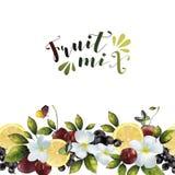 Baner med fruktblandningen och blommor Arkivbilder
