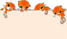 Baner med katter vektor illustrationer