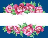 Baner med rosa pioner för blomning som isoleras på blå bakgrund vektor illustrationer