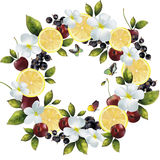 Banerfruktblandning i en cirkel Royaltyfri Fotografi