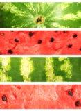 banersamlingsvattenmelon Arkivbild