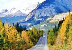 Banff, Αλμπέρτα, Καναδάς Στοκ Φωτογραφίες