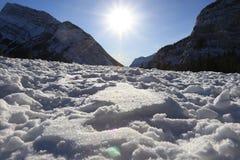 Banff, ландшафт зимы Канады Стоковые Фото