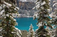 Banff, Alberta Royalty Free Stock Photo