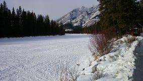 Banff bevroren rivier Royalty-vrije Stock Fotografie