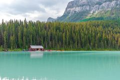 Tourists at Lake Louise in Banff, Canada. Banff, Canada -- August 03, 2018.  Tourists take canoes onto the turquise waters of Lake Louise in Banff, Canada with Royalty Free Stock Images