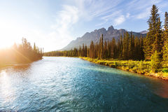 Banff. Castle Mountain in Banff National Park, Canada Stock Image