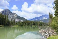 Banff flod Fotografering för Bildbyråer