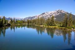 Banff - flod pilbåge med bergbakgrunden Royaltyfri Fotografi