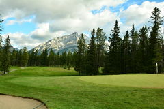 Banff Golf course. Banff is one of the prettiest places to slice a golf ball.With the Rocky mountains surrounding to wildlife holding up your drive.Banff Stock Images