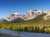Banff Icefield gångallé Royaltyfri Bild