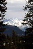 Banff Mountains. Beautiful Canadian Rocky Mountains surounding Banff Springs Stock Photos
