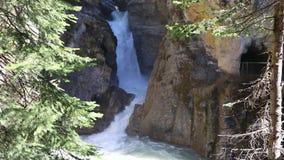 Waterfalls in Johnston Canyon. Banff National Park, Alberta, Canada stock video footage