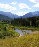 Banff National Park, Canada. River in the Canadian Rockies near Lake Louise, Banff National Park, Alberta Royalty Free Stock Photography