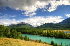Banff National Park. Nature, trees, mountains and water streams Stock Photos