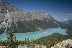 Banff National Park Peyto Lake Royalty Free Stock Photos