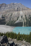 Banff National Park Peyto Lake Royalty Free Stock Photo
