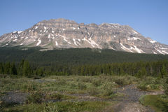 banff nationalpark Arkivbilder