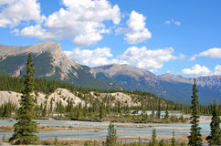 Banff Park River Royalty Free Stock Image