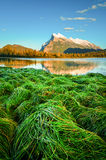 Banff Vermilion Lake Mountain  sunset Stock Photos