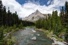 Banff zet Assiniboine Canada op Stock Foto's