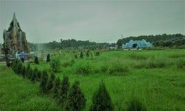 Bangabandhu Sheikh Mujib Safari Park, Gazipur, Bangladesh Stock Afbeeldingen
