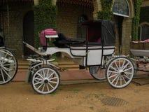 Bangalore, Karnataka, la India - 1 de enero de 2009 carro blanco antiguo del caballo del color en el palacio de Bangalore imagen de archivo