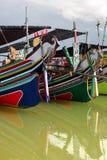 bangau firmanci Malaysia morski obraz royalty free