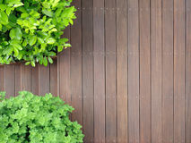 Bangkirai terrace. Wooden terrace from above, covered with tropical wooden timber planks called bangkirai Stock Photography