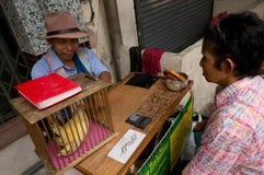 BANGKOK, - 10 FEBRUARI: Chinees Nieuwjaar 2013 - Vieringen binnen Royalty-vrije Stock Afbeeldingen