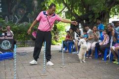 BANGKOK - 2 AUGUSTUS 2014, de Correcte Hond van Dusit toont in Dusit-Dierentuin of Ka stock foto's