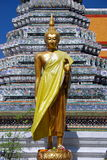 bangkok buddha gryningtempel thailand Arkivfoton