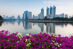 Bangkok business park with flower at front Stock Images