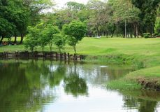 Bangkok City Park colorful trees with reflection Royalty Free Stock Photos