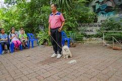 BANGKOK - 2 de agosto de 2014, exposición canina del sonido de Dusit en el parque zoológico de Dusit o ka Imagenes de archivo