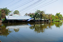 bangkok flod thailand Arkivfoton