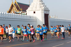 Bangkok Marathon Royalty Free Stock Photography