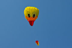 Head Duck Kite Royalty Free Stock Image