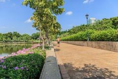 Bangkok Metropolis, the capital. Of Thailand. The Sukhumvit area with Benjasiri Park stock image