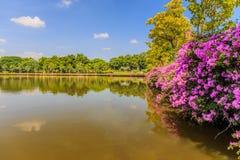 Bangkok Metropolis, the capital. Of Thailand. The Sukhumvit area with Benjasiri Park royalty free stock photo