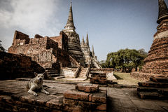 Ayutthaya. The antique capital of Thailand Stock Images