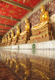 22 Bangkok-november: De gezette staten van Boedha op een rij binnen de tempelzaal van Wat Suthat op 22 November, 2013 in Bangkok, Stock Afbeeldingen