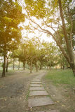 Bangkok public park with sunshine and leading line. Public garden in the central of Bangkok city Royalty Free Stock Images