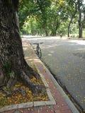 BANGKOK TAILANDIA - abril de 2015: La bicicleta y el motorista en el Lumpini parquean el 11 de abril de 2015 en BANGKOK TAILANDIA Foto de archivo