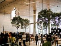Bangkok Tajlandia, Listopad, - 12, 2018: Jab?czany lojalny klient odwiedza nowego Apple Store przy iconsiam w Bangkok, Tajlandia zdjęcie stock