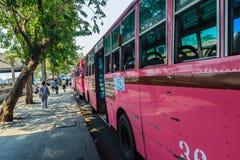 Bangkok Tajlandia, Marzec, - 2, 2017: Różowa autobusowa kreskowa liczba 8, początek Fotografia Stock