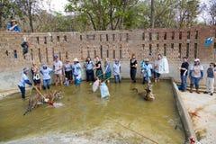 BANGKOK, THAÏLANDE - FÉVRIER 2014 : Les gens avec le temple de tigre Images stock